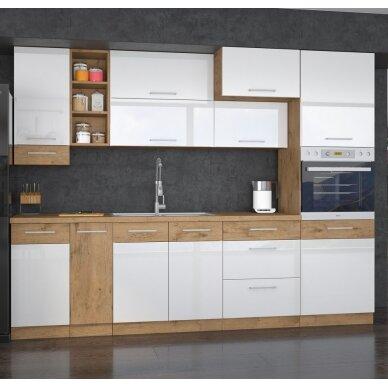 Virtuvės komplektas (270)